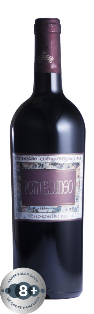 Fles - Wijnen - Italië Piersanti - Pontelungo - 0,7l -