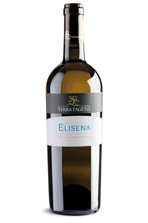 Fles - wijnen - Italië - Terra Fageto - Elisena - Marche Bianco IGP - 0,75l